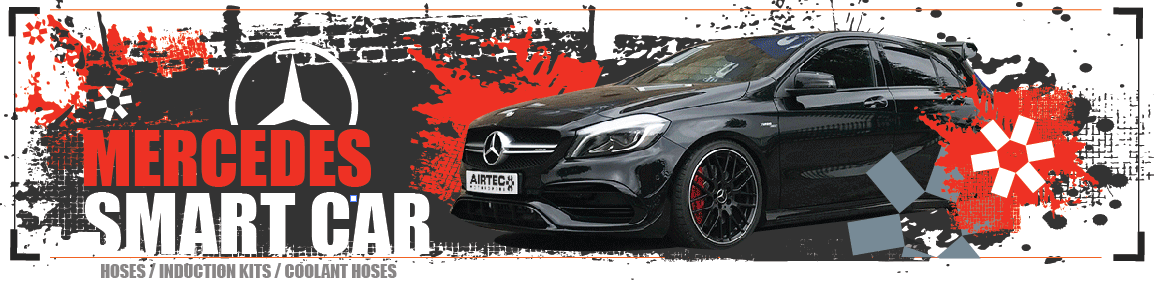Mercedes & Smart car
